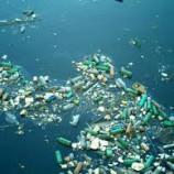 Ambientalista pede limpeza de ilhas de plástico nos oceanos