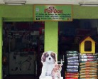 Pet shop Pop Dog