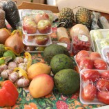 Alimentos orgânicos na Feira Terra Viva