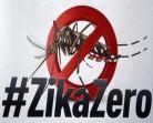 Dia Nacional de Mobilizaçãode de Combate ao Aedes Aegypti