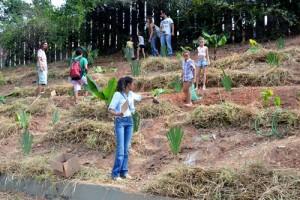Mutirão criou a horta com ajuda de participantes do evento