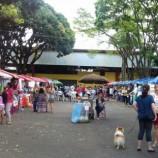 5º Mercado Vivo + Verde em Santa Tereza